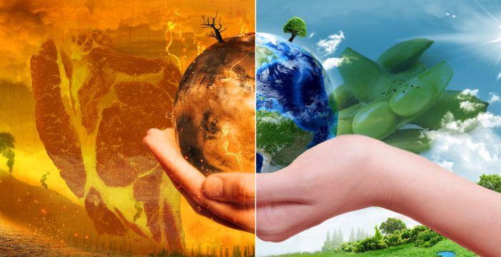 Wybrał soje zamiast mięsa, żeby ratować planetę. Dieta a globalne ocieplenie.