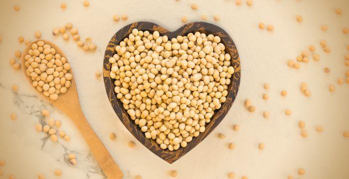 Dlaczego soja jest taka zdrowa i nie szkodzi mężczyznom (nawet GMO)?
