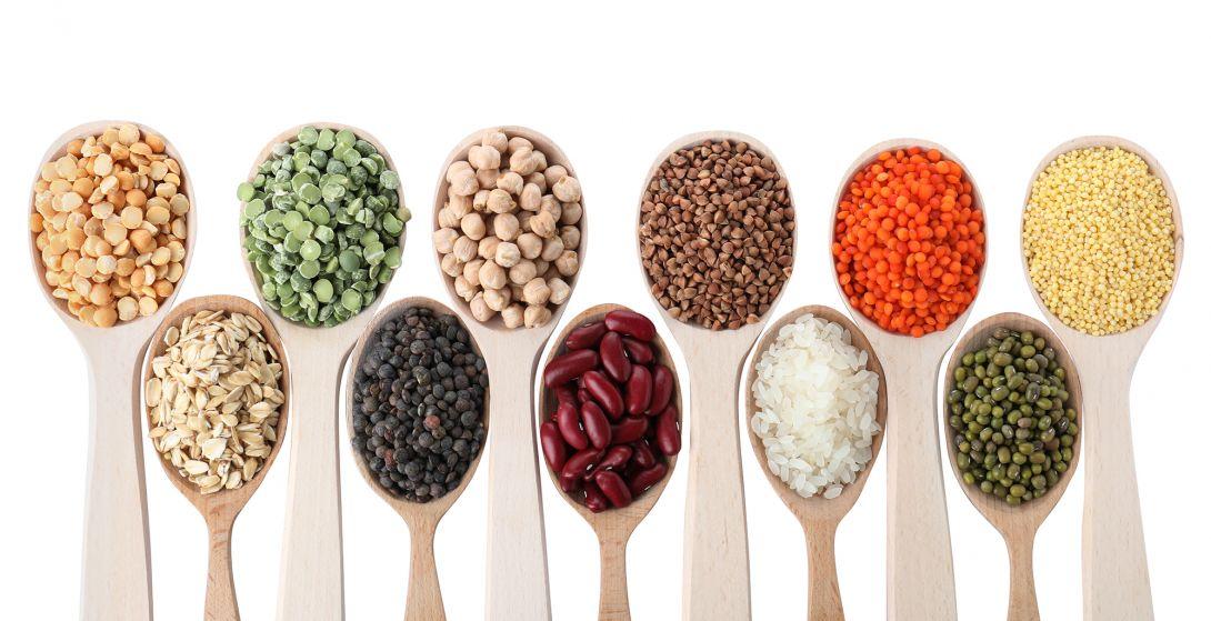 Białko roślinne a zwierzęce – sport, zdrowie i najlepsze źródła