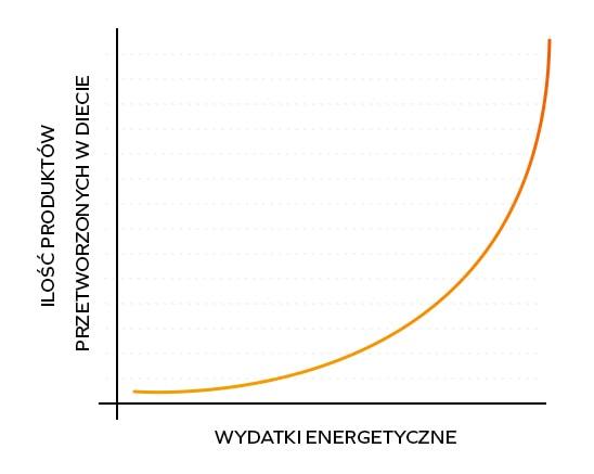 Wydatki energetyczne